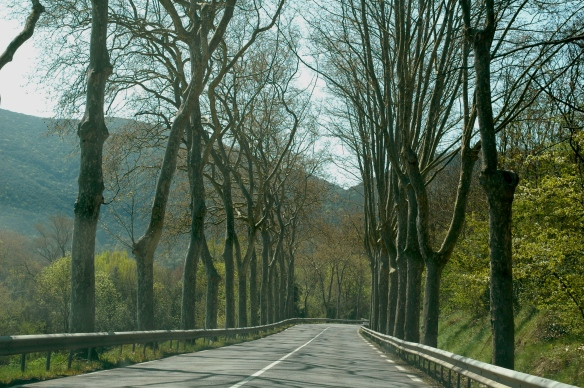 Driving towards Limoux